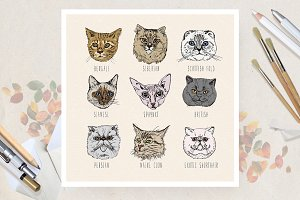 Hand drawn set of cute cats
