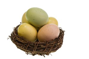 Bird nest with Easter eggs isolated