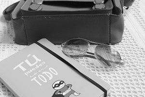 Bag Sunglasses Book