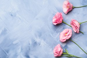 Blue background with pink flowers