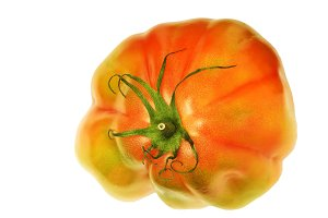 heart tomato ISOLATED