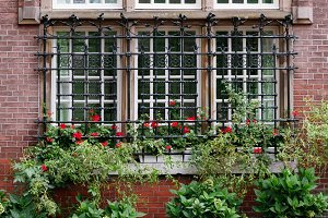 Beautiful window with flowers of a old house in Amsterdam
