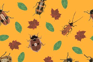 Beetles and Leaves