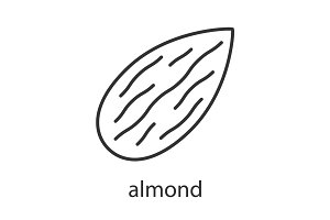 Almond linear icon