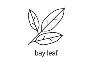 Bay leaves linear icon