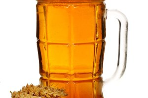 glass of foamy beer with wheat isolated on white background