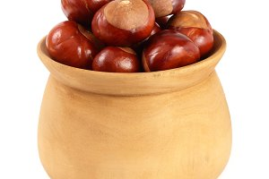 chestnut in a wooden bowl isolated on white background closeup