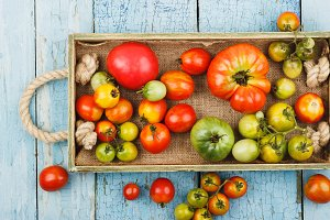 Set of different sorts of ripe tomatoes in the wooden tray
