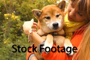Girl and dog Shiba Inu outdoors