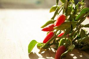 Small chilli pepper