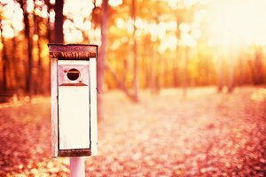 Birdhouse in Dreamy Autumn Color