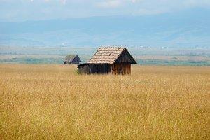 Western wooden barns