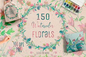150 Watercolor Florals+Bonus