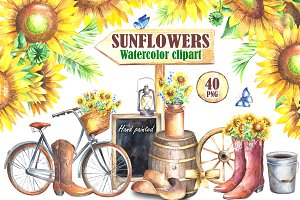 Sunflowers watercolor clipart