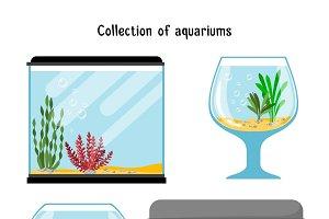 Aquarium forms vector illustration