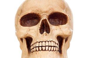 Creepy human skull