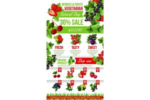Vector poster of fresh garden berries market sale