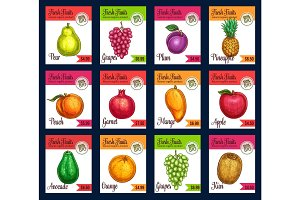 Vector price cards of sketch tropical exotic fruits