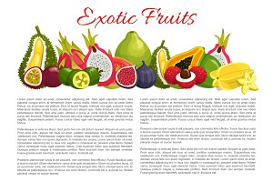 Vector information poster tropical exotic fruits