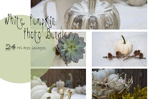 White Pumpkin PHOTO Bundle