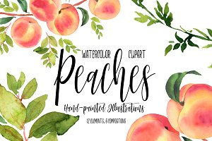 Peaches clipart