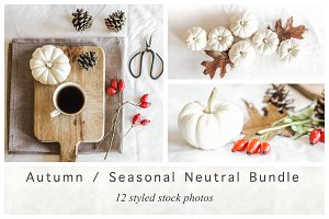 Autumn / Seasonal Neutral Bundle