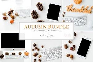 Autumn Styled Stock Photo Bundle