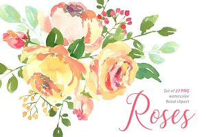 Yellow pink watercolour roses PNG