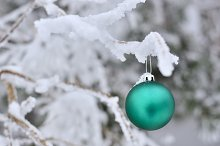Christmas green and white