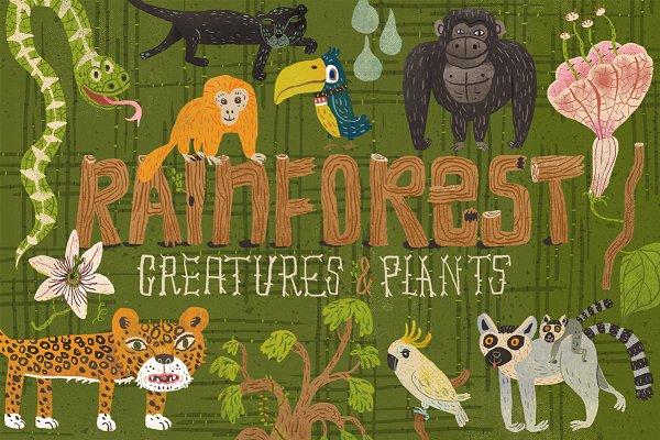 21 Rainforest Creatures & Plants