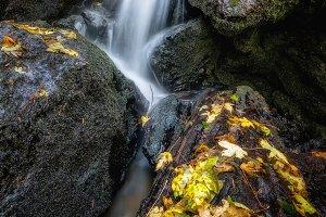 Autumn at Trillium Falls