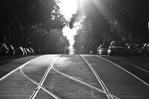 Melbourne Tram Tracks Black + White