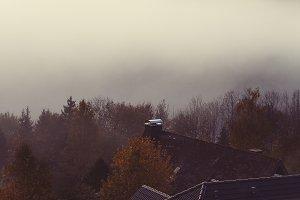 Mist Over Autumn Forrest Mountains