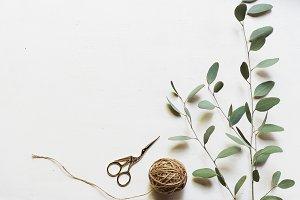 Eucalyptus,string & Scissors Flatlay
