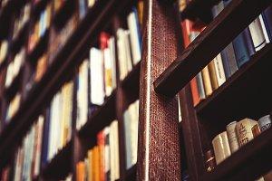 Library Bookshelf Wooden Ladder