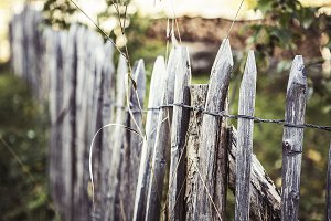 Dilapidated Wooden Fence Palings