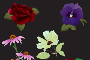Flowers PNG & Vectors