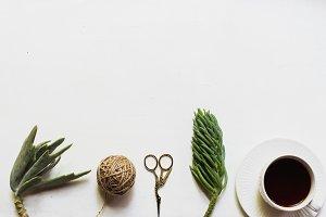 Succulents,Scissors,String & Teacup