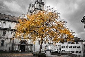 Bright Autumn Tree with Dark Church
