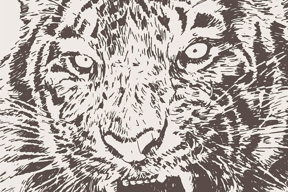 Illustration of a roaring tiger in Illustrations - product preview 1