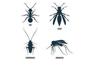 Ant and wasp, cockroach and mosquito vector illustration