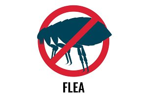 Anti-flea emblem of red and blue colours vector illustration