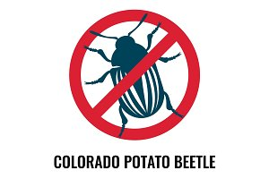 Colorado potato beetle anti emblem on vector illustration