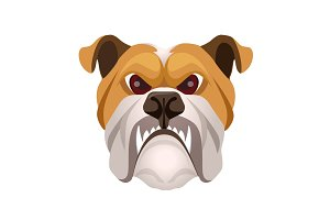 Angry bulldog face colored in beige and white vector realistic