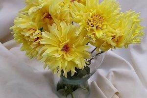 Yellow dahlias bouquet
