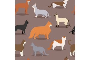Different cat breeds cute kitty pet cartoon cute animal character set seamless pattern