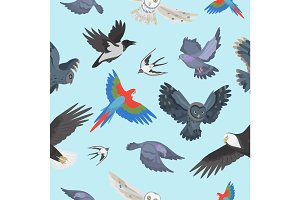 Different wing wild flying birds seamless pattern background vector illustration