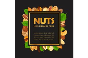 Nut banner with kernel and shell, sign