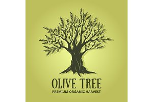 Olive tree logo design. Vector illustration. Creative label used for advertising olives, olive oil, natural olive products premium quality.