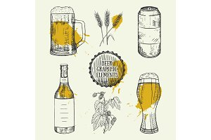 Beer set with mug, bottle, can, wheat elements. Vector illustration.